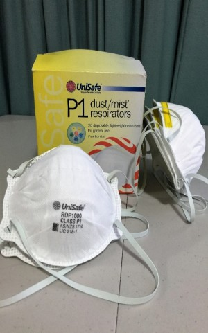 Dust Mask 20pcs/box